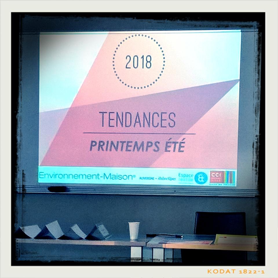 Analyse des tendances 2018 pour le marché de l'habitat et la décoration » par Sylvie Danet et l'Espace textiles